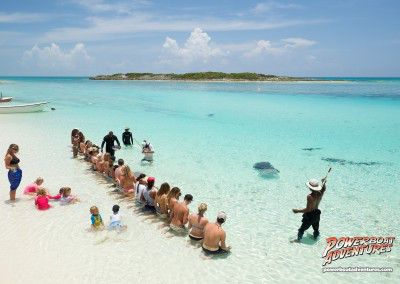 Stingray feeding in paradise