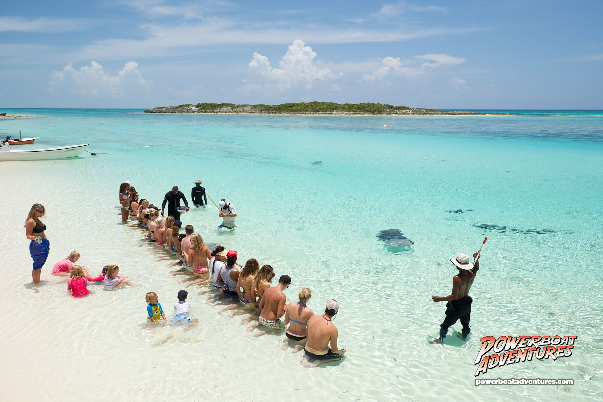 Stingray Feeding In Paradise